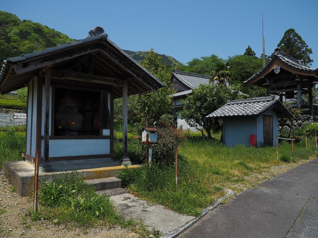 P4301911.jpg-1.jpg